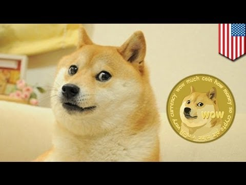 Dogecoin: cryptocurrency passes Bitcoin to reach the moon
