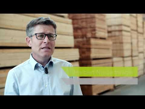 Häuser aus Holz, um die Umwelt zu schonen (und besser zu leben)