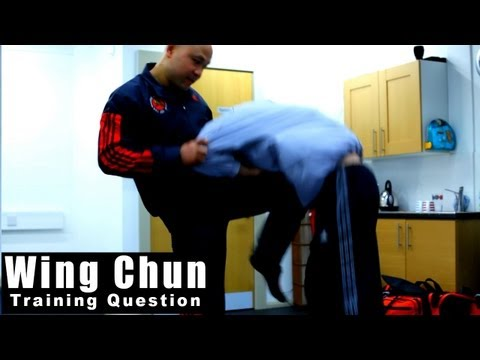 wing chun techniques- how to deal with a push Q85 Image 1