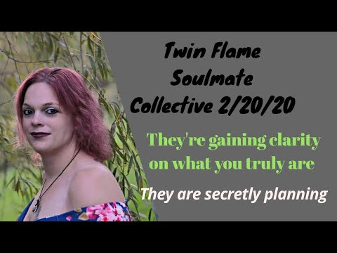Twin Flame Soulmate Collective 2/20/20 Distance brings clarity, they're secretly planning approach