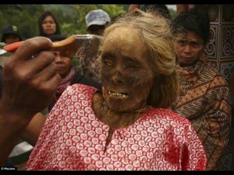 Menyeramkan Mayat Berjalan Di Ritual Manene Toraja video