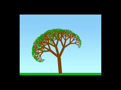 Seed to Tree: Owen Goss - Guelph Jam 4