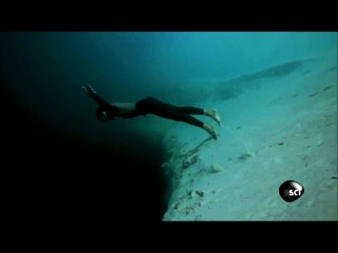 Is a 202 Meter Freedive Possible?