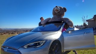 Tesla full of Teddy Bears!