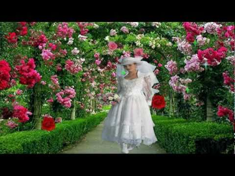 bollywood very beutiful song phool phool pa bani tari tasweer...