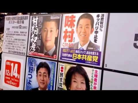 2014 Japanese Election