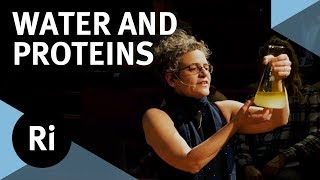 The Physics of Life: How Water Folds Proteins - with Sylvia McLain