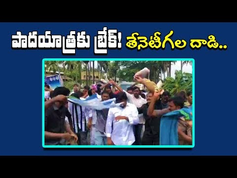 Honey Bees Attack On YS Jagan In Kanuru | Jagan Padayatra In West Godavari District | indiontvnews