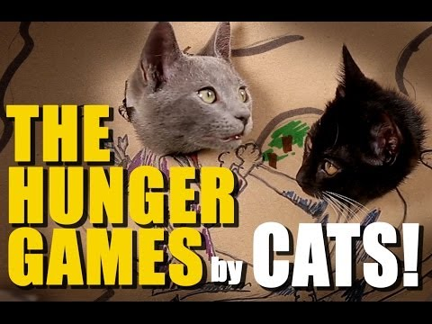 CATS remake HUNGER GAMES with Cardboard!