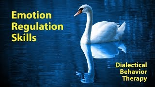 DBT Emotion Regulation Skills Explained (by the Toronto Hypnotherapist)