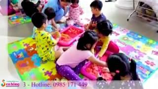 Giới thiệu về Trường mầm non Sen Hồng Quảng Ngãi