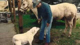 Watch Brooks  Dunn Cowboy Town video