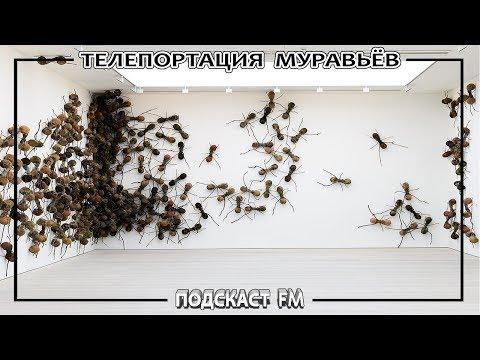 ТЕЛЕПОРТАЦИЯ МУРАВЬЁВ Атта / Подкаст FM