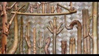 5 Jenis Bambu Bertuah beserta Kegunaannya