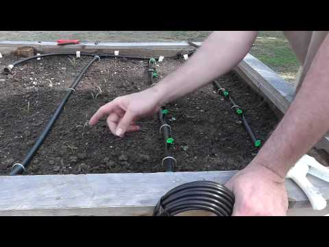 Installing a Drip System for Raised Beds