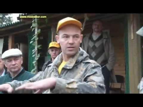 Алексей Матюшкин — промышленное пчеловодство