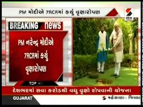 PM Narendra Modi Plants a Tree on World Environment Day || Sandesh News