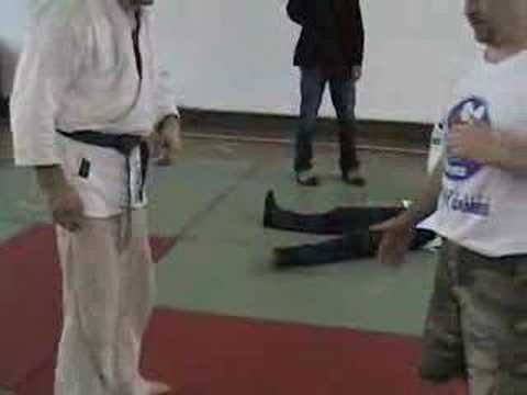 Body Control After Throw - Serbia Sambo Training Camp Image 1