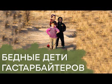 Как в русских школах мигранты вытесняют российских детей – Гражданская оборона, 15.11.16