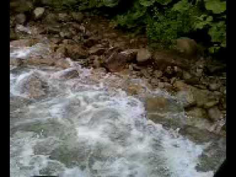 Фото Джиппинг (река Шахе) - Лоо