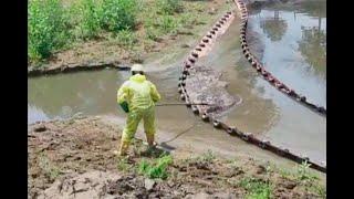 Mancha de crudo en río Catatumbo ha avanzado 25 kilómetros | Noticias Caracol