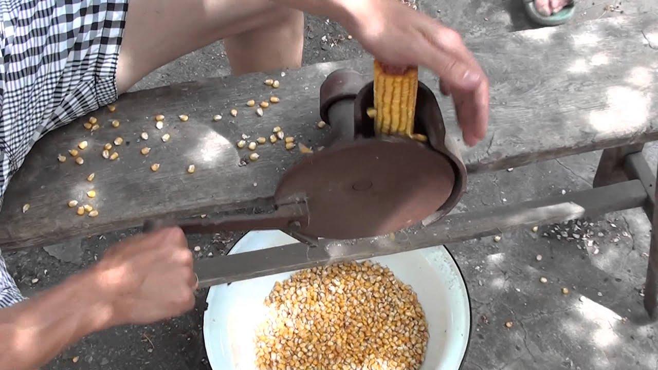 Быстро почистить кедровые орехи в домашних условиях