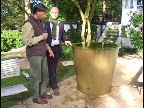 wasserspiel im garten terrasse einmal anders geplant natursteinwolf youtube. Black Bedroom Furniture Sets. Home Design Ideas