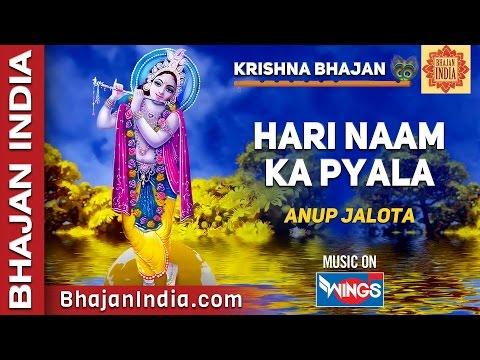Krishna Bhajan - Hari Naam Ka Pyala By Anup Jalota video