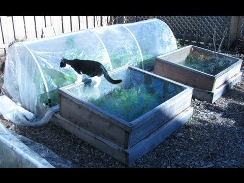 Winter Vegetable Garden: Are You Planning For One This Winter?