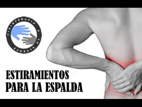 Estiramientos para el dolor de espalda o lumbalgia  /  Fisioterapia a tu alcance