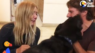 Stolen Puppy Dog Reunited With Couple in India | The Dodo
