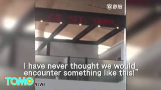 Chinese couple having sex at an airport caught on camera live viral video