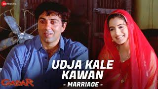 Gadar - Udd Ja Kaale Kanwan (Marriage) Video Song