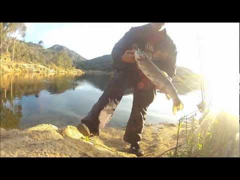 Lake Dixon Trout Fishing
