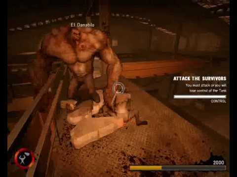 Left 4 Dead Witch Glitch. Video