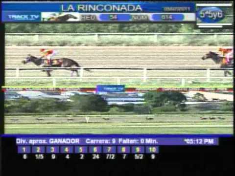 Clásico Fuerza Armada 2011 ( Gr. 1) - La Rinconada