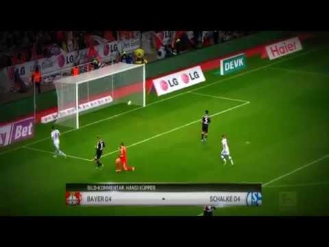 FC Schalke 04 Alle Bundesliga Tore 2013 2014