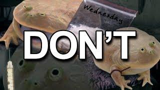 Don't do Wednesdays