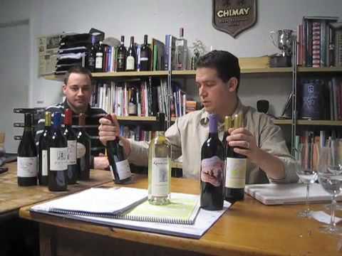 Is Organic Wine Sulfite Free? | Organic Wine