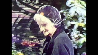 Watch Jack Frost Birdowner as Seen On Tv video