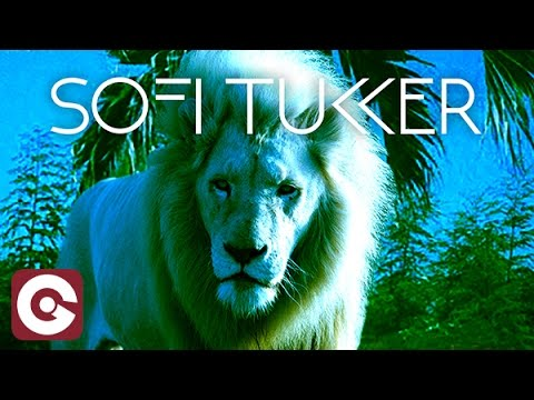 SOFI TUKKER Hey Lion music videos 2016