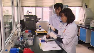 Khoa học công nghệ và cuộc sống : Những ứng dụng của công nghệ Nano trong đời sống