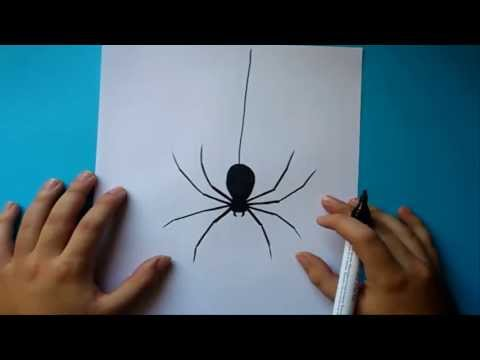 Como dibujar una araña paso a paso How to draw a spider