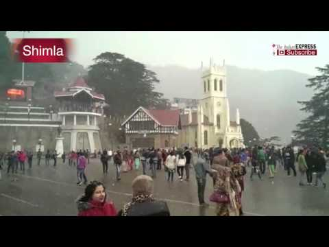 Shimla Snowfall 2016: Visuals Of Tourists Enjoying The Snow