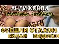 65 ЁШЛИ АНДИЖОНЛИ БОБОЙ АЁЛ БИЛАН КИЛГАН mp3