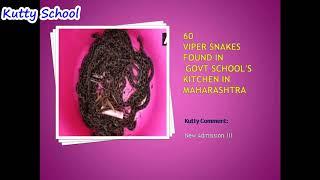 Kutty School NEWS