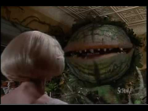 Little Shop Of Horrors - Suppertime video