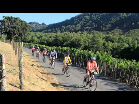 Classic Napa Valley Bike Tour