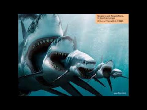 top 10 de los dinosaurios mas fuertes y letales