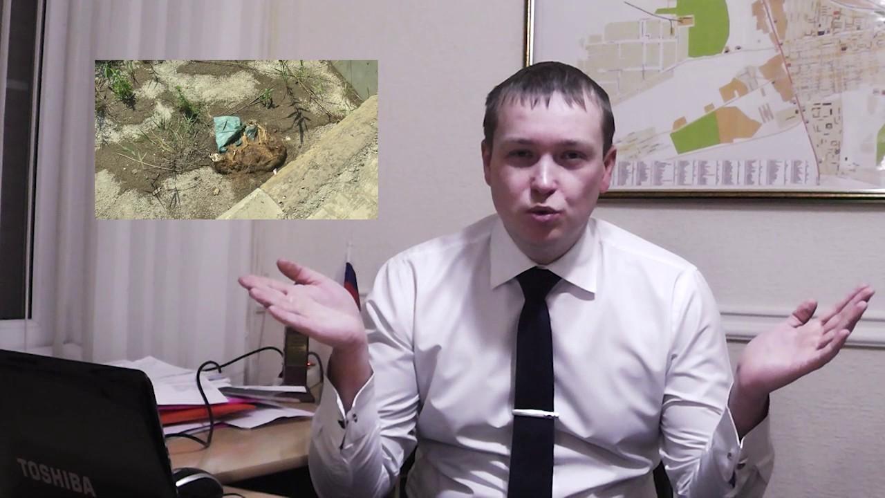 Губернаторские подарки краснодарский край